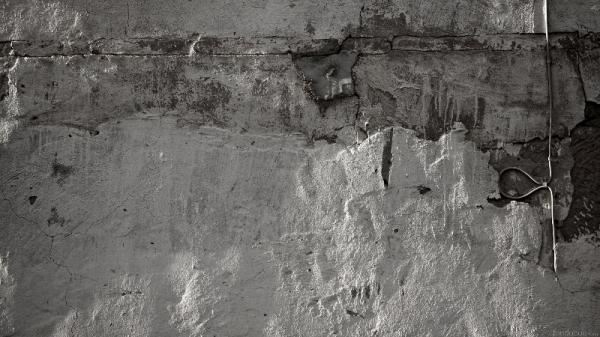 02-gavilanes